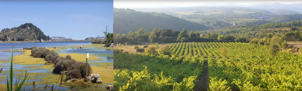 The Languedoc-Roussillon / Herault region